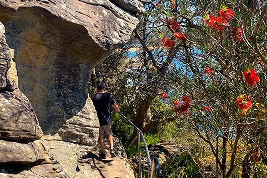 2 Day Northern Sydney Walks