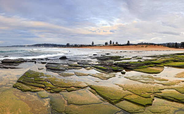 Panorama,Of,Northern,Beaches,Of,Sydney,-,Collaroy,Beach,At